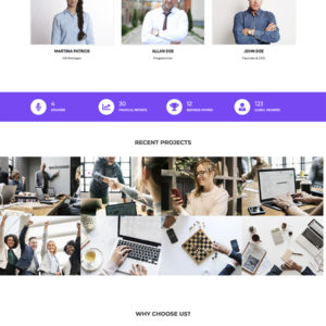 finance-wordpress-theme
